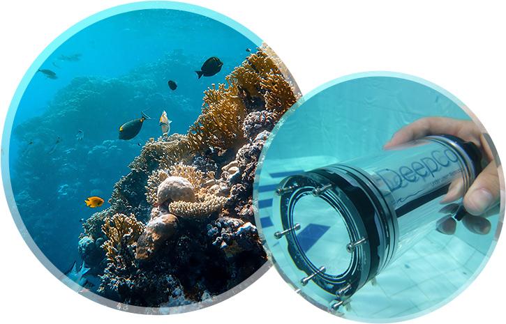 robótica subacuática- DeepCo